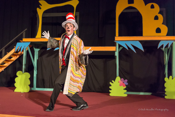Seussical - Presented by HCA